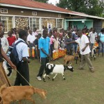 pfk_goats for life (2)